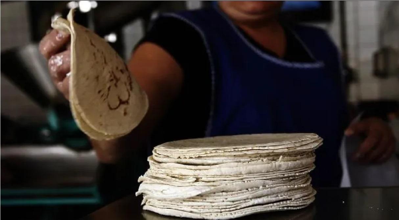 autoridades-confirman-que-mo-subira-el precio-de-la-tortilla