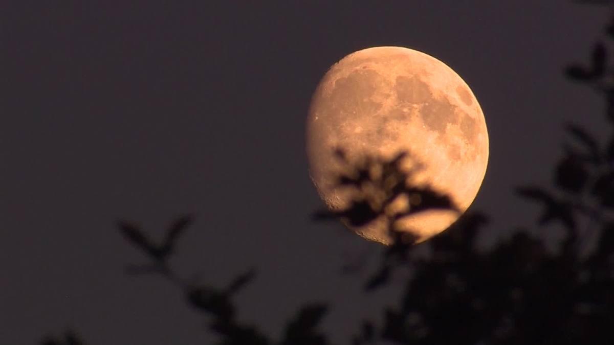 """La """"Luna de gusanos"""" es una luna llena que podremos ver el próximo domingo 28 de marzo, día en que podremos observar una luna más brillante y grande"""