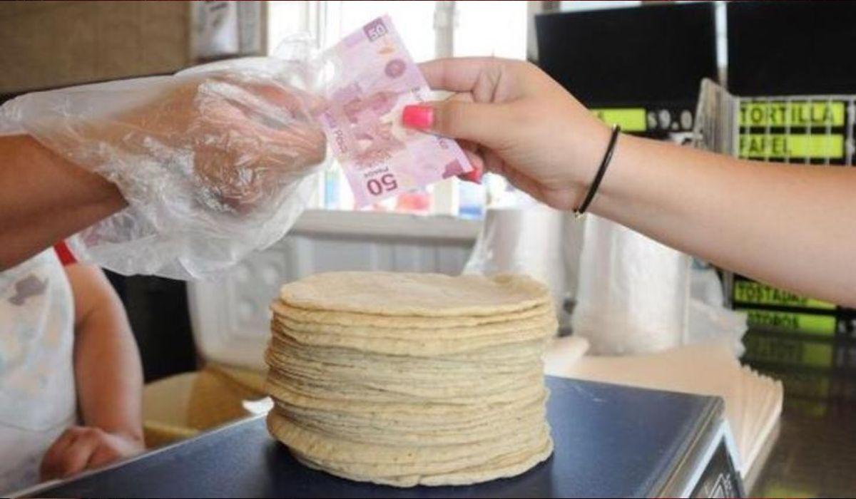 El kilo de tortillas ha aumentado su precio en los ultimos meses en el territorio mexicano